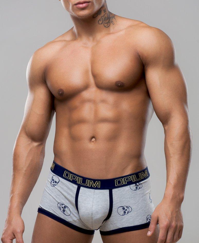 Фото моделей в нижнем мужском белье начинающих всякие